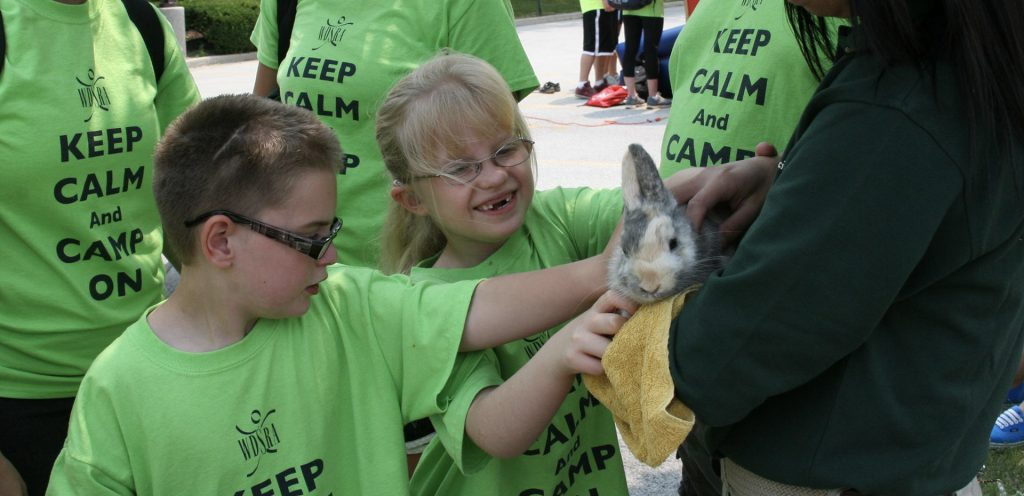 Campers petting bunny graphic