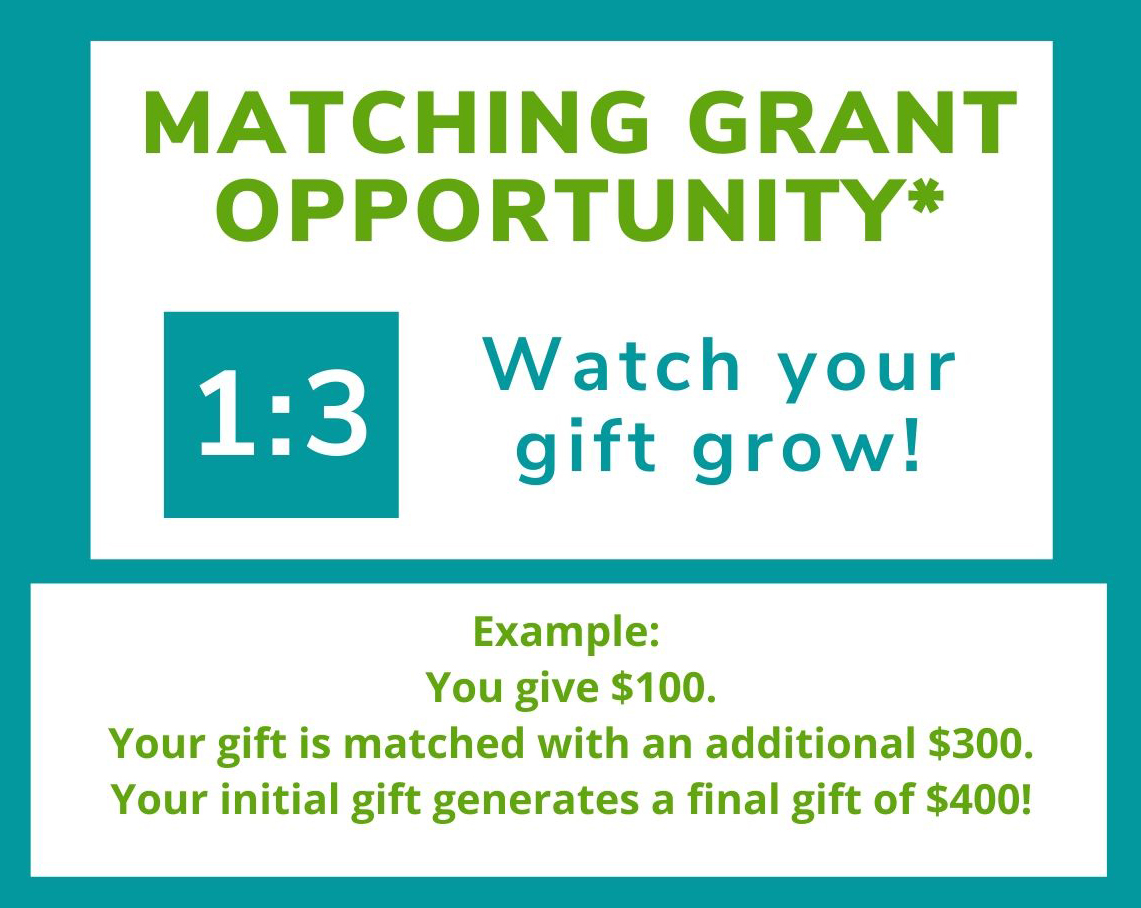Coleman Foundation Matching grnat opportunity